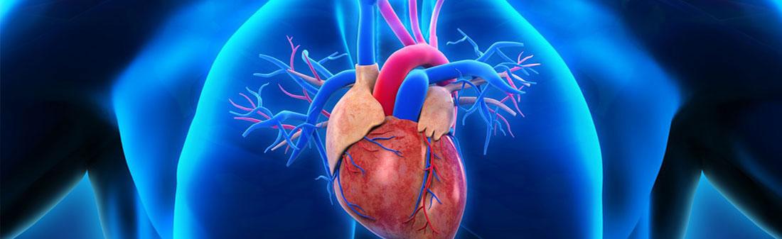 apie svarbiausią hipertenzijos vaizdo įrašą